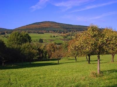 Baumpflege auf der Streuobstwiese im Herbst; Oktober