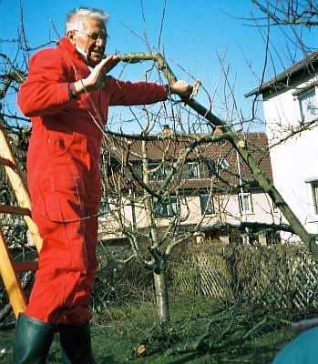 Baumschnittkurs mit Hemut Palmer in Tübingen-Derendingen im Jahr 2002